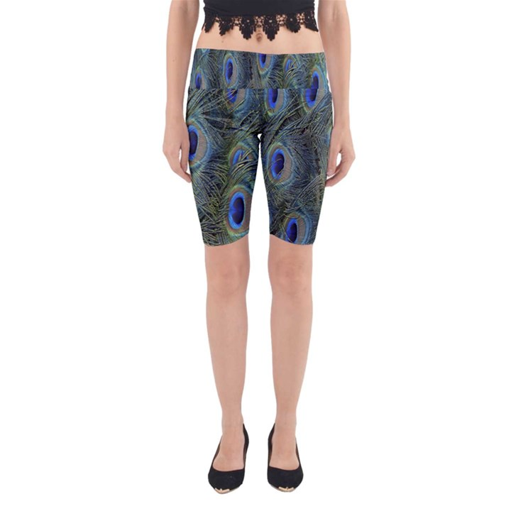 Peacock Feathers Blue Bird Nature Yoga Cropped Leggings