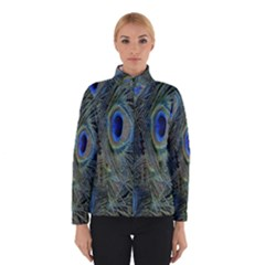 Peacock Feathers Blue Bird Nature Winterwear