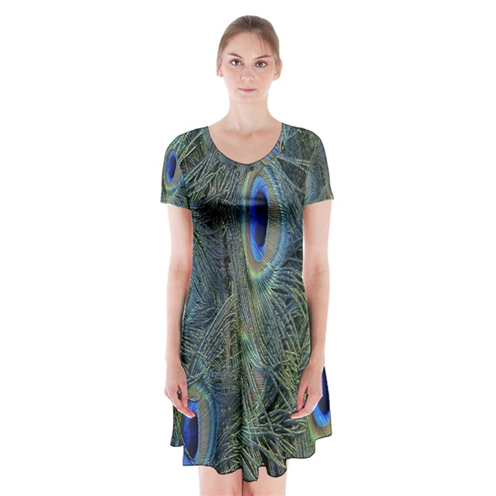 Peacock Feathers Blue Bird Nature Short Sleeve V-neck Flare Dress