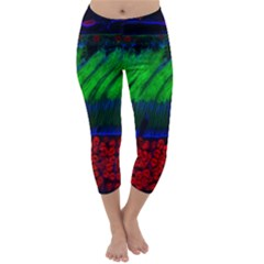 Cells Rainbow Capri Winter Leggings  by Mariart