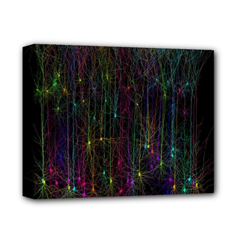 Brain Cell Dendrites Deluxe Canvas 14  X 11  by Mariart