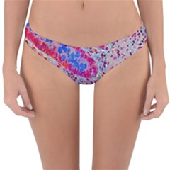 Histology Inc Histo Logistics Incorporated Alcian Blue Reversible Hipster Bikini Bottoms by Mariart