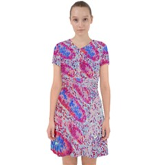 Histology Inc Histo Logistics Incorporated Alcian Blue Adorable In Chiffon Dress by Mariart