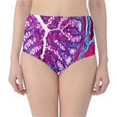 Histology Inc Histo Logistics Incorporated Masson s Trichrome Three Colour Staining High-waist Bikini Bottoms by Mariart