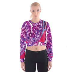 Histology Inc Histo Logistics Incorporated Masson s Trichrome Three Colour Staining Cropped Sweatshirt by Mariart