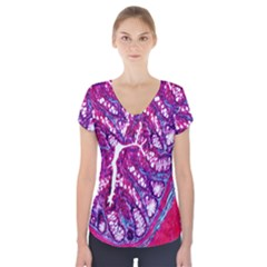 Histology Inc Histo Logistics Incorporated Masson s Trichrome Three Colour Staining Short Sleeve Front Detail Top by Mariart