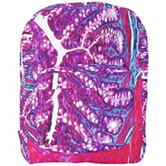 Histology Inc Histo Logistics Incorporated Masson s Trichrome Three Colour Staining Full Print Backpack by Mariart