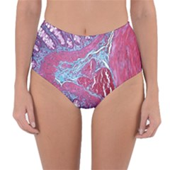 Natural Stone Red Blue Space Explore Medical Illustration Alternative Reversible High Waist Bikini Bottoms
