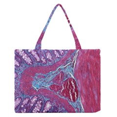 Natural Stone Red Blue Space Explore Medical Illustration Alternative Zipper Medium Tote Bag by Mariart