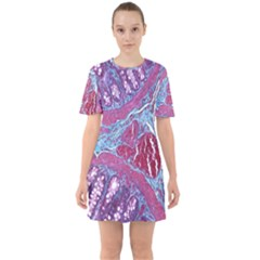 Natural Stone Red Blue Space Explore Medical Illustration Alternative Sixties Short Sleeve Mini Dress