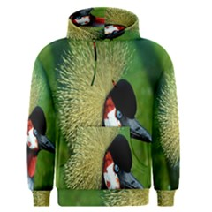 Bird Hairstyle Animals Sexy Beauty Men s Pullover Hoodie
