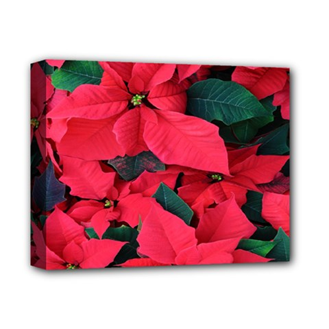 Red Poinsettia Flower Deluxe Canvas 14  X 11  by Mariart