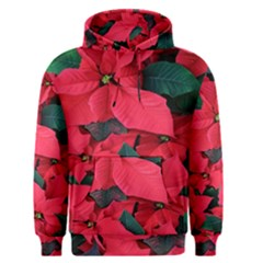 Red Poinsettia Flower Men s Pullover Hoodie by Mariart