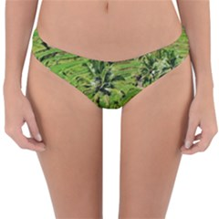 Greenery Paddy Fields Rice Crops Reversible Hipster Bikini Bottoms by Nexatart