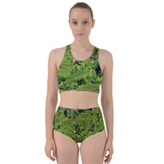 Greenery Paddy Fields Rice Crops Racer Back Bikini Set by Nexatart