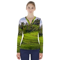 Rice Terrace Terraces V Neck Long Sleeve Top