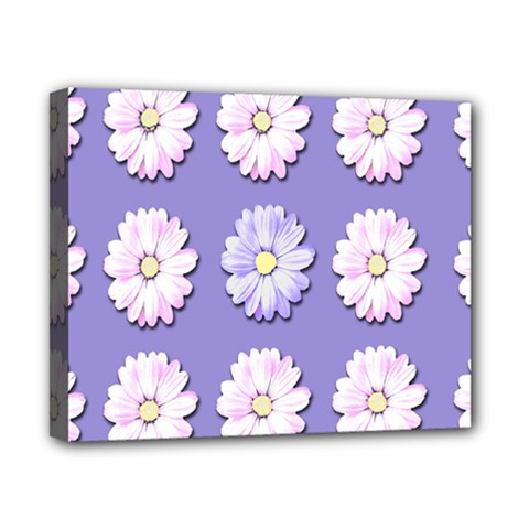 Daisy Flowers Wild Flowers Bloom Canvas 10  X 8