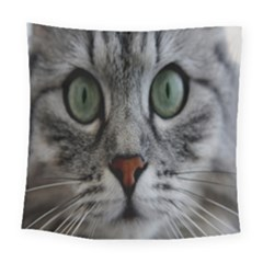 Cat Face Eyes Gray Fluffy Cute Animals Square Tapestry (large) by Mariart