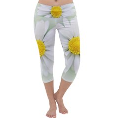 Art Daisy Flower Art Flower Deco Capri Yoga Leggings
