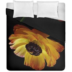 Ranunculus Yellow Orange Blossom Duvet Cover Double Side (california King Size) by Nexatart