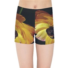 Ranunculus Yellow Orange Blossom Kids Sports Shorts by Nexatart