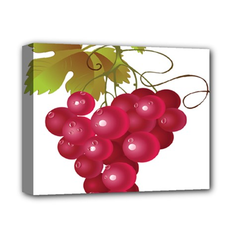 Red Fruit Grape Deluxe Canvas 14  X 11  by Mariart