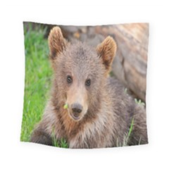 Baby Bear Animals Square Tapestry (small) by Mariart
