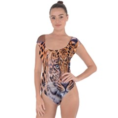 Tiger Beetle Lion Tiger Animals Leopard Short Sleeve Leotard