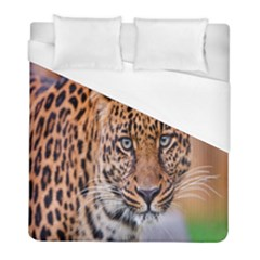 Tiger Beetle Lion Tiger Animals Leopard Duvet Cover (full/ Double Size) by Mariart
