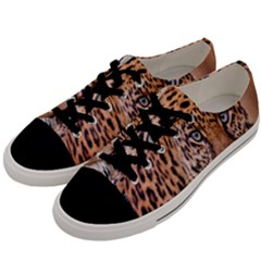 Tiger Beetle Lion Tiger Animals Leopard Men s Low Top Canvas Sneakers by Mariart