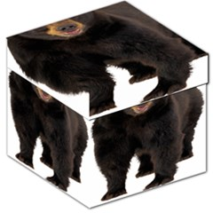 Brown Bears Animals Storage Stool 12