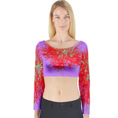 Spot Paint Red Green Purple Sexy Long Sleeve Crop Top by AnjaniArt