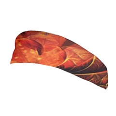 Ablaze With Beautiful Fractal Fall Colors Stretchable Headband by jayaprime