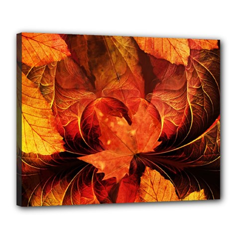 Ablaze With Beautiful Fractal Fall Colors Canvas 20  X 16  by jayaprime
