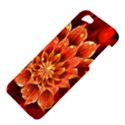 Beautiful Ruby Red Dahlia Fractal Lotus Flower Apple iPhone 5 Hardshell Case View4