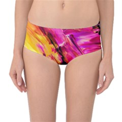 Abstract Acryl Art Mid Waist Bikini Bottoms by tarastyle