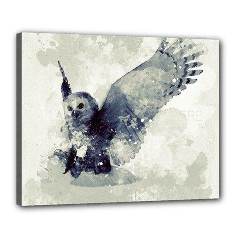 Cute Owl In Watercolor Canvas 20  X 16  by FantasyWorld7