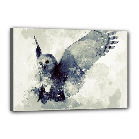 Cute Owl In Watercolor Canvas 18  X 12  by FantasyWorld7