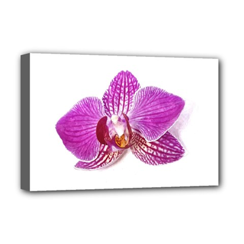 Lilac Phalaenopsis Aquarel  Watercolor Art Painting Deluxe Canvas 18  X 12   by picsaspassion