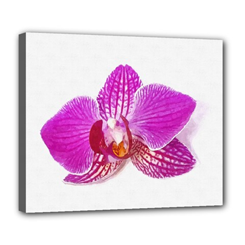 Lilac Phalaenopsis Flower, Floral Oil Painting Art Deluxe Canvas 24  X 20   by picsaspassion