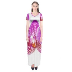 Lilac Phalaenopsis Flower, Floral Oil Painting Art Short Sleeve Maxi Dress by picsaspassion