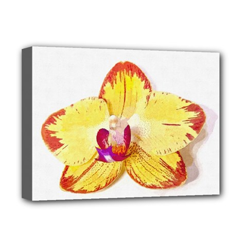 Phalaenopsis Yellow Flower, Floral Oil Painting Art Deluxe Canvas 16  X 12   by picsaspassion