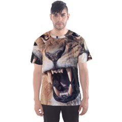 Male Lion Angry Men s Sports Mesh Tee by Celenk