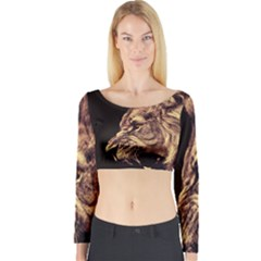 Angry Male Lion Gold Long Sleeve Crop Top