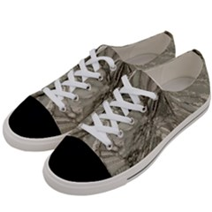 Color Magic Women s Low Top Canvas Sneakers by JUST4U2