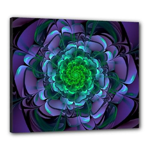Beautiful Purple & Green Aeonium Arboreum Zwartkop Canvas 24  X 20  by jayaprime