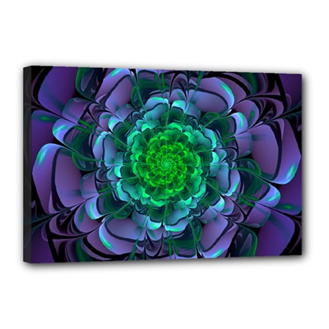 Beautiful Purple & Green Aeonium Arboreum Zwartkop Canvas 18  X 12  by jayaprime