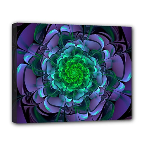 Beautiful Purple & Green Aeonium Arboreum Zwartkop Deluxe Canvas 20  X 16   by jayaprime
