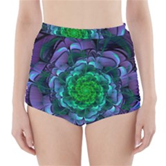 Beautiful Purple & Green Aeonium Arboreum Zwartkop High-waisted Bikini Bottoms by jayaprime