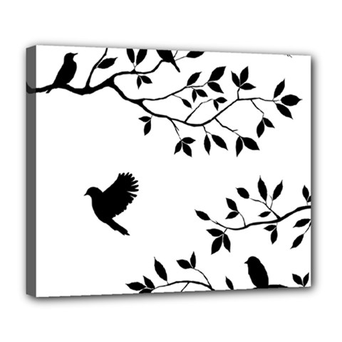 Bird Tree Black Deluxe Canvas 24  X 20